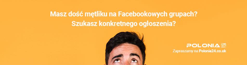 Polonia24 ogłoszenia